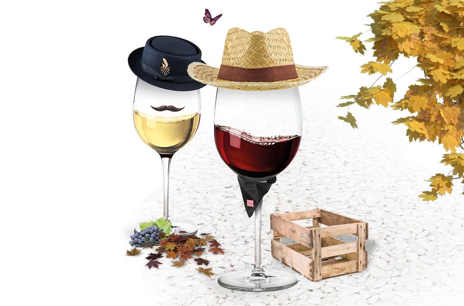 Des vins de caractère!